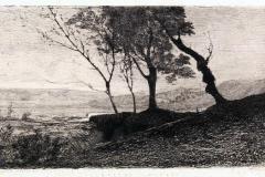 Avondo Vittorio - Campagna Romana, 1870. Acquaforte e puntasecca su carta, 25,3 x 34,3 cm
