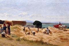 Borrani Odoardo - La raccolta del grano a Castiglioncello. Olio su tela, 59 x 119 cm. Firma in basso a sinistra