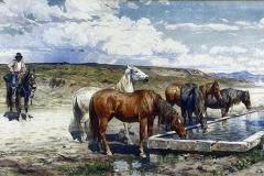 Cavalli con buttero - Coleman Enrico