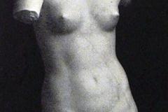 Ercole Drei. Venere Bionda - Tecnica: Marmo