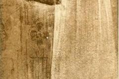 Alfredo Ricci | Il Dolce Grappolo, Illustrazione di Isaotta Guttadauro, 1886