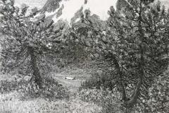 Gottardo Segantini. Monte Forno - Tecnica: Olio su Tela, 90 x 60 cm