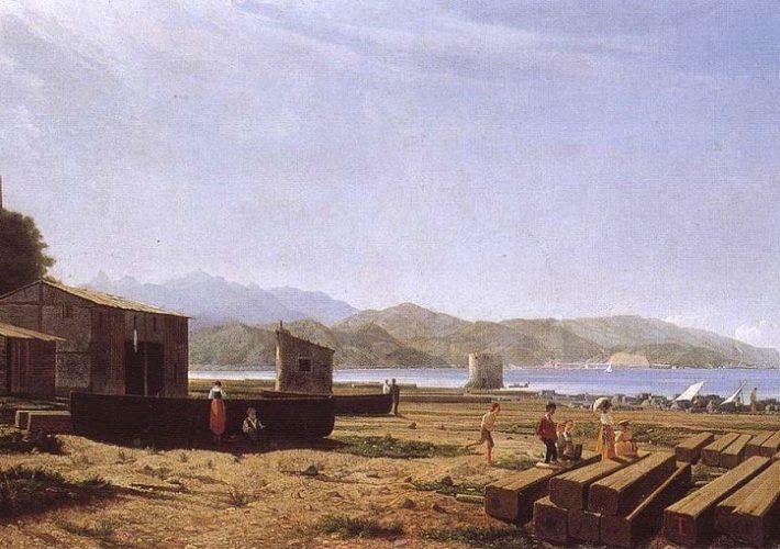 Luxoro Tammar